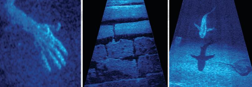 aris-imaging-sonars